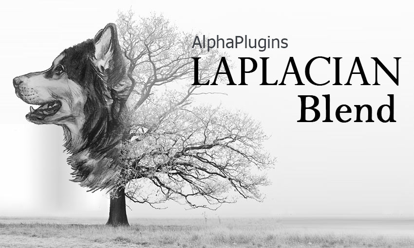 AlphaPlugins LaplacianBlend plug-in